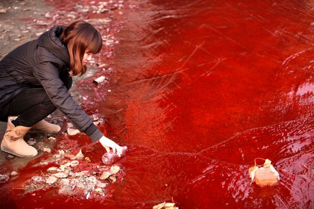 A journalist takes a sample of red polluted water from the Jianhe River in Luoyang, Henan Province, on Dec. 13, 2011. (Photo: Reuters)