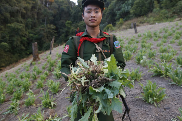 Myanmar, Burma, The Irrawaddy, opium, heroin, poppy, Shan State, drugs, narcotics, addiction