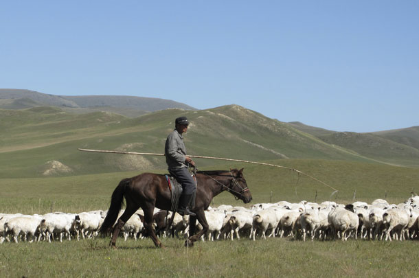 China, coal, Inner Mongolia, Mongol, land rights, human rights