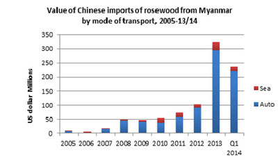 New research by EIA found that Chinese imports of illegally logged Burmese rosewood species is skyrocketing. (Graph: EIA)