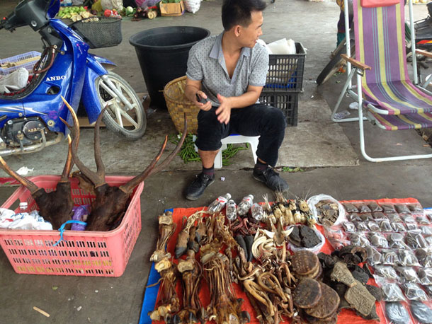 A market stall in Mong La, Shan State, sells endangered animal parts. (Photo: Nang Seng Nom / The Irrawaddy)