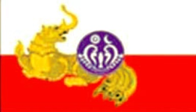 Arakan National Party (ANP) Flag