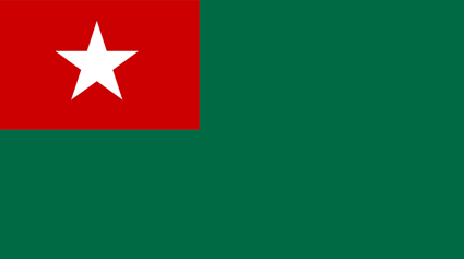 Union Solidarity and Development Party (USDP) Flag