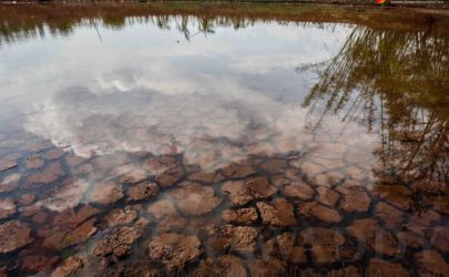 A dried-up pond in Pindaya Township in Southern Shan State on April 28. (Photo: Jpaing / The Irrawaddy)