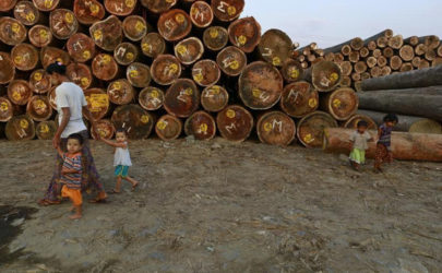 A woman walks with children near logs at a timber yard in Rangoon on Jan. 31, 2014. (Photo: Soe Zeya Tun / Reuters)
