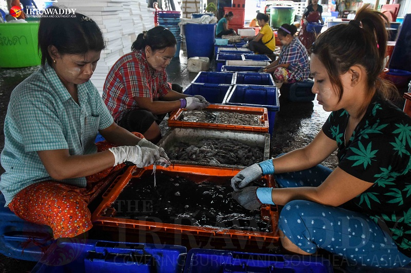 Migrant workers are pictured laboring in the Talaat Kung shrimp market and on construction sites in Mahachai, Samut Sakhon, Thailand. (Photos: JPaing / The Irrawaddy)